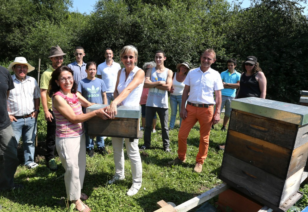 Découvrons la biodiversité, guidés par les abeilles !